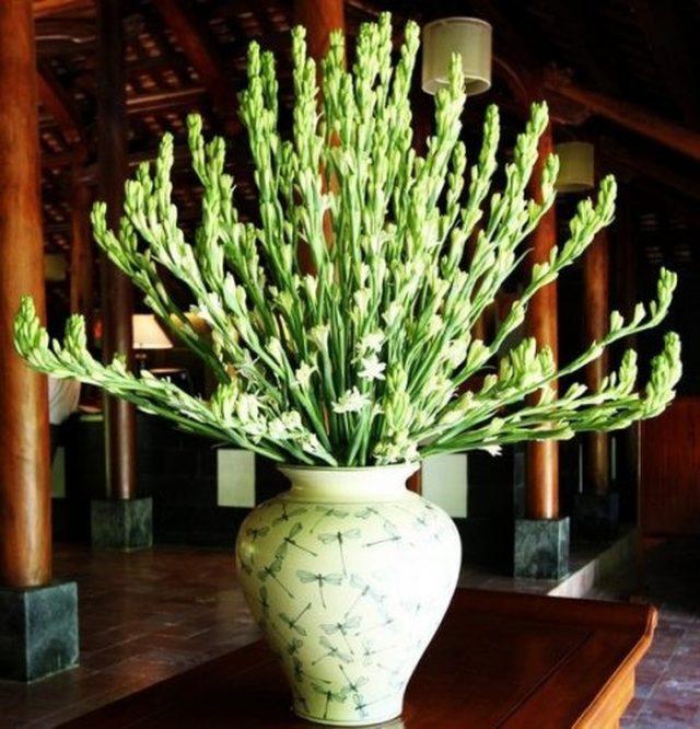 cách cắm hoa huệ để bàn thờ ngày tết