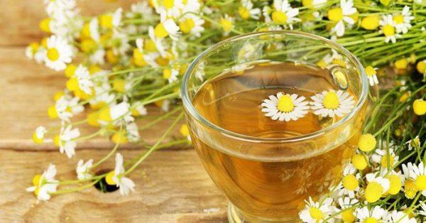 Cách làm toner hoa cúc trà xanh làm sáng da
